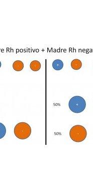 Embarazada y Rh negativo