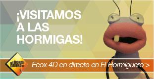 Ecox 4D realiza una ecografía 4D en directo