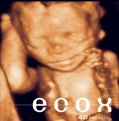 Fotos de 23 semanas de embarazo