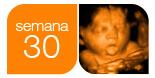 Ecografía 30 semanas