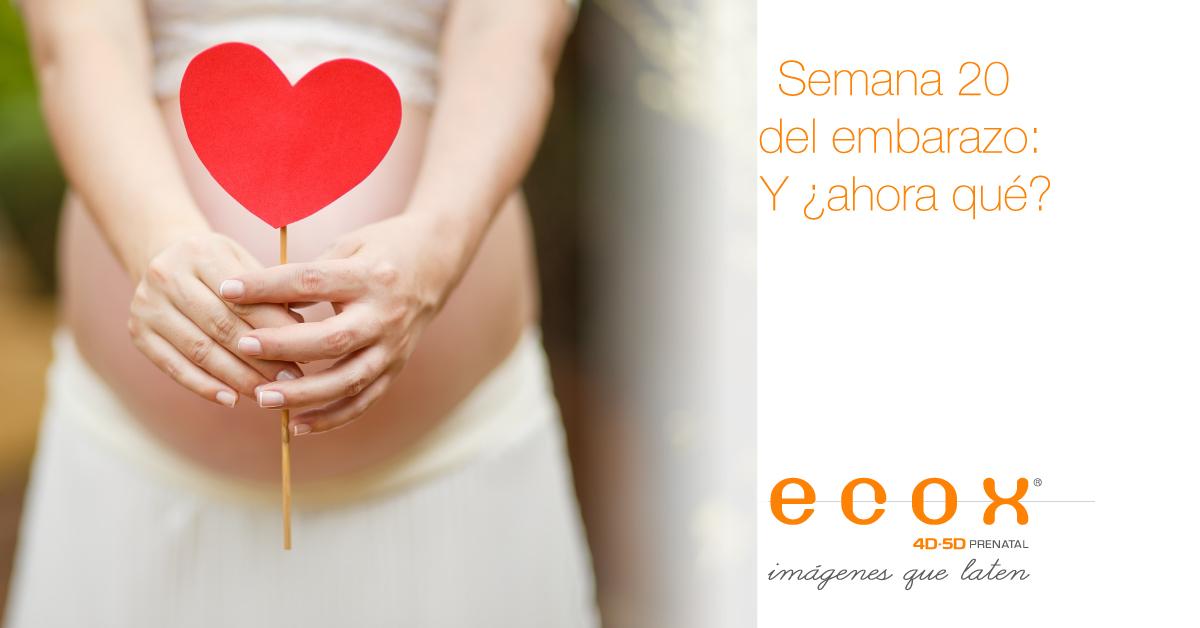 Semana 20 del embarazo, ¿y ahora qué? blog